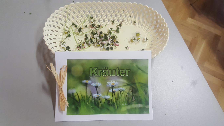 Osterbasteln & Kräuterwanderung in Weikersdorf am Steinfelde 2019